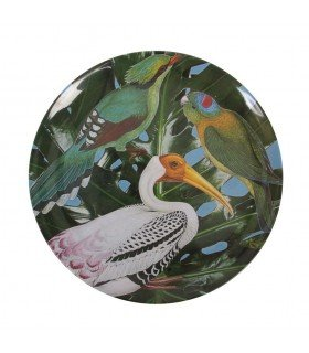 Jungle & Klevering plate